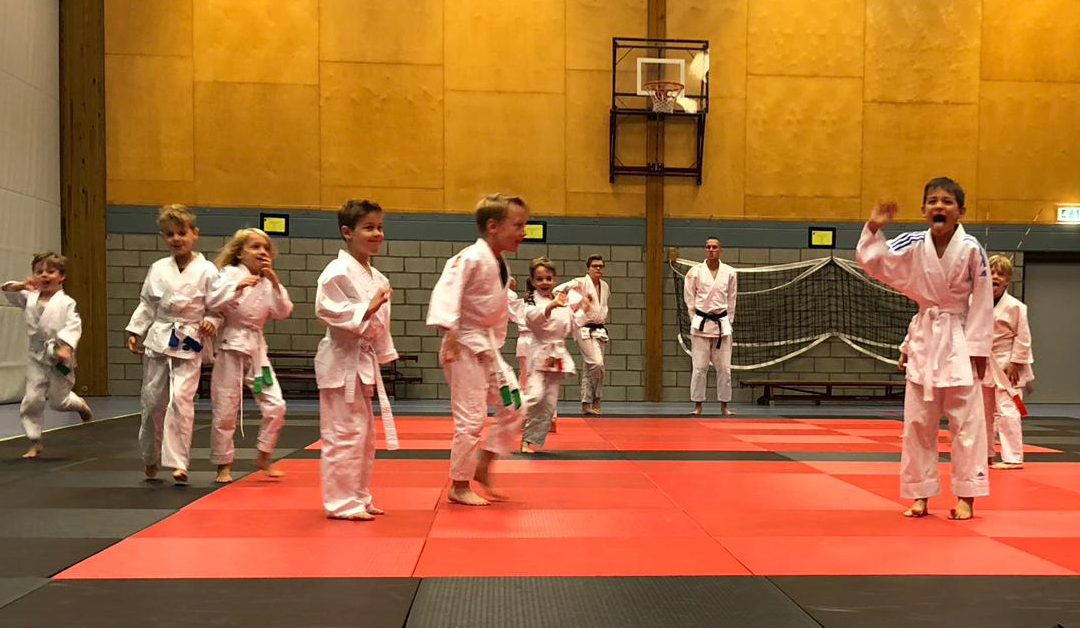 Vriendjes- en Vriendinnetjessporten bij Budo Ryu Sports
